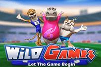 Игровой автомат Игровой автомат Wild Games о олимпиаде в онлайн-казино Мега Джек